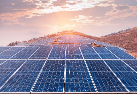 solar plant bca
